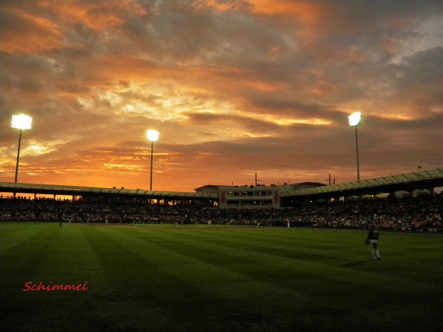 Baltimore Orioles, Sarasota